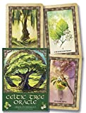 img - for Celtic Tree Oracle book / textbook / text book