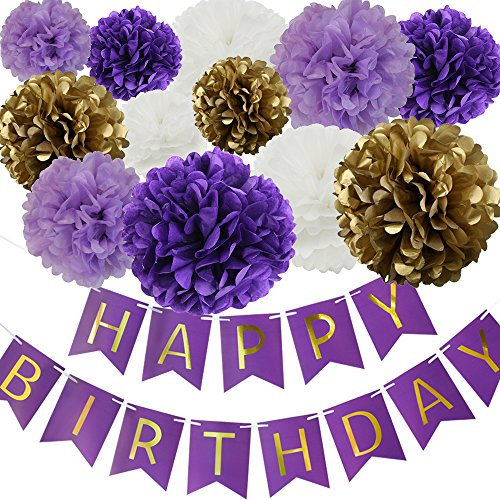 Happy Birthday Party Decoration Kit Purple Happy Birthday Banner