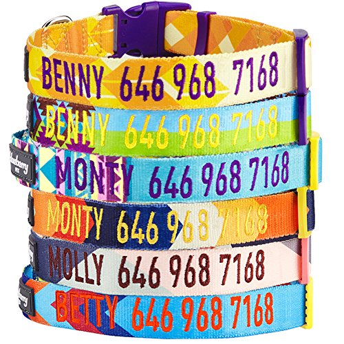 Blueberry Pet 7 Patterns Personalized Dog Collar, Neutral