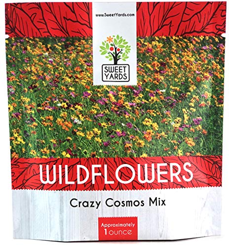 (Crazy Cosmos Wildflower Seeds Mixture (All Colors) - Bulk 1 Ounce Packet - Over 5,000 Seeds - Pink, Yellow, Orange, Red, Purple and White Mixed Species!)