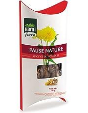 HAMIFORM Pause Nature Racines de Pissenlit pour Rongeur 120g