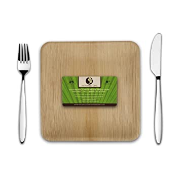 Disposable Eco Palm Paper Plates Square Compostable Biodegradable Heavy Duty Dinner Party Plate -  sc 1 st  Amazon.com & Amazon.com: Disposable Eco Palm Paper Plates: Square Compostable ...