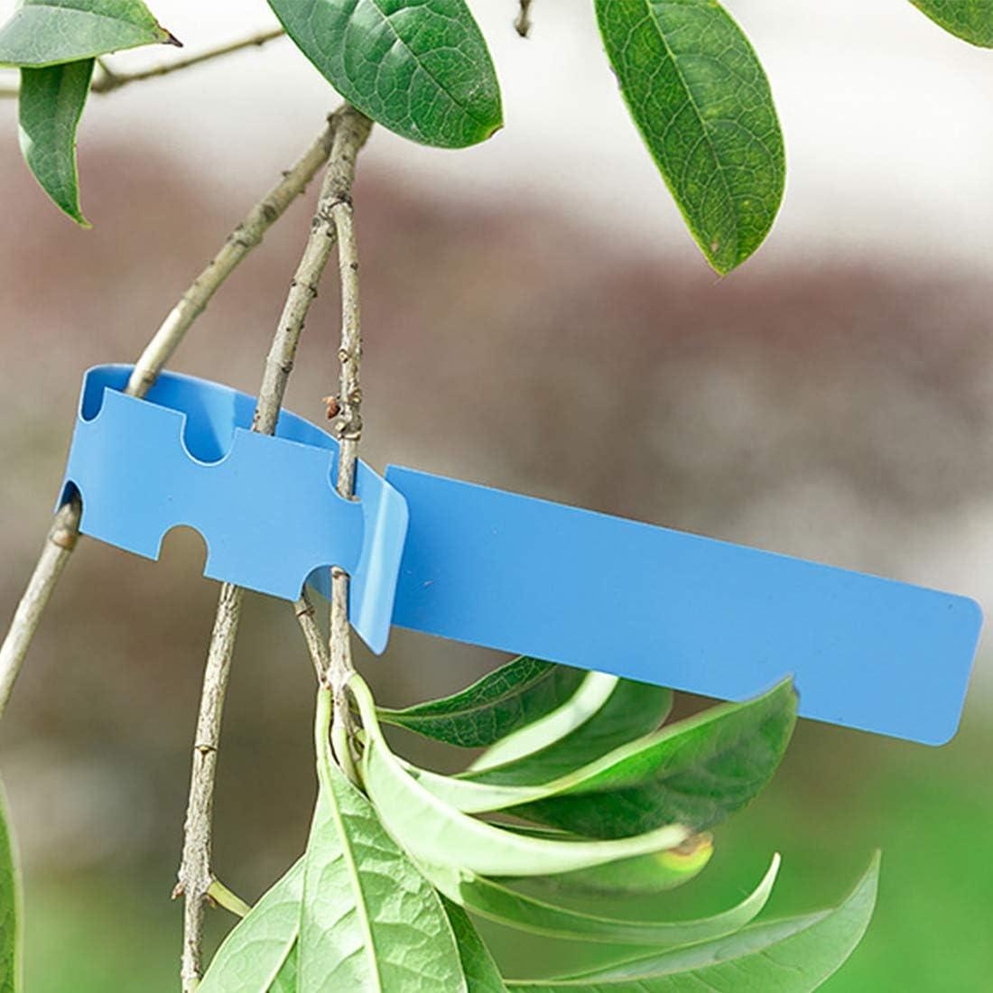 Livraison de Couleurs al/éatoires JINYANG Fournitures horticoles 50 PCS /Étiquette Imperm/éable Floral Plant Label /Étiquette de Jardinage