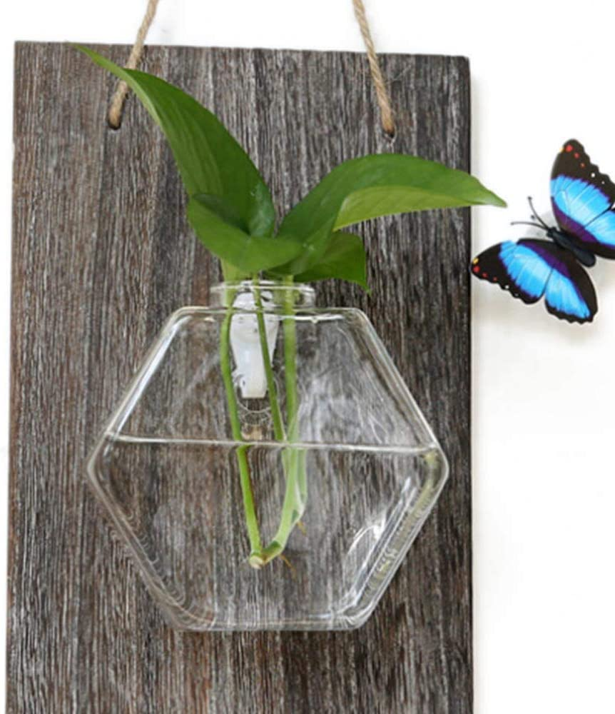dise/ño moderno C Belupai Club Jarr/ón de madera para colgar en maceta de cristal