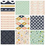 Southwestern Quilt Bundle | Native American Fabrics | Tribal Fat Quarters | Desert Theme Fabrics | Leah Duncan and April Rhodes for Art Gallery Fabrics (Fat quarters)