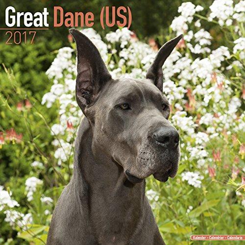 Great Dane (Us) Calendar 2017 - Dog Breed Calendar - Wall Calendar 2016-2017