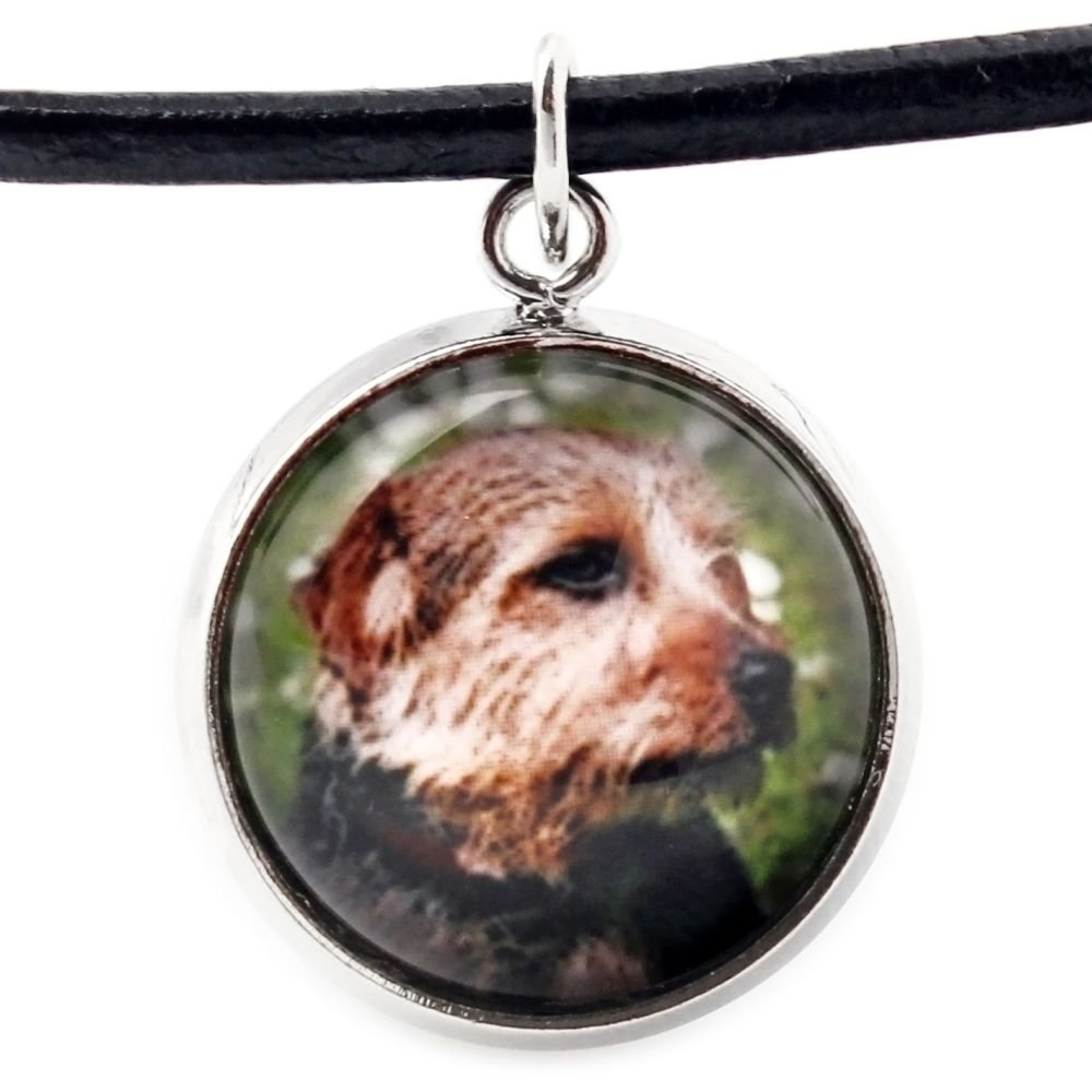 Handmade Set of Earrings and Necklace Photo Jewelry Norfolk Terrier Art Dog Ltd