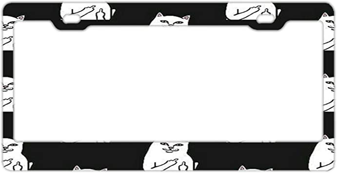 FunnyLpopoiamef Personalized Stainless Steel License Plate Frame Holder Decorative License Plate Frame 2 Hole and Screws