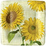 Paper Plates Party Supplies Wedding Birthday Dessert Plates or Salad Plates Sunflowers Pack of 16 & Amazon.com: Paper Plates Dinner Size Paper Party Supplies Sunflowers ...