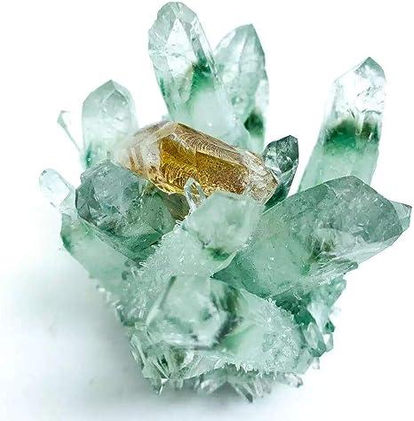 46gram Natural Hand-Carved Duck /&Lotus green phantom quartz crystal