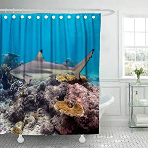 Douecish 72X78 Shower Curtain, Shower Curtain Reef Shark Swimming Over Tropical Coral Carcharhinus Melanopterus Cool Shower Curtain with Hooks Waterproof Eco-Friendly Long Shower Curtain for Bathroom