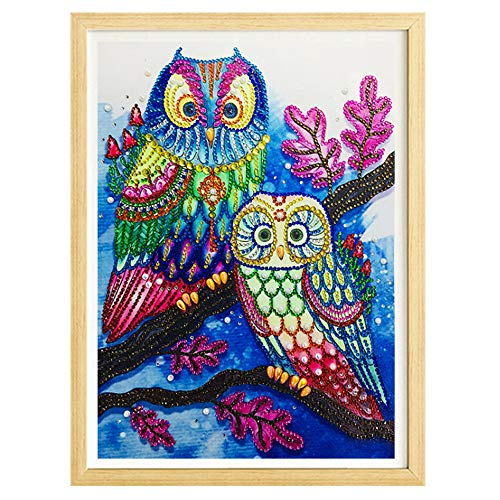 (Special Shaped Diamond Painting,Owl Pattern DIY 5D Embroidery Cross Stitch Arts Craft Home Decor (Multicolor,)