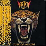 Tusk Of Jaguar