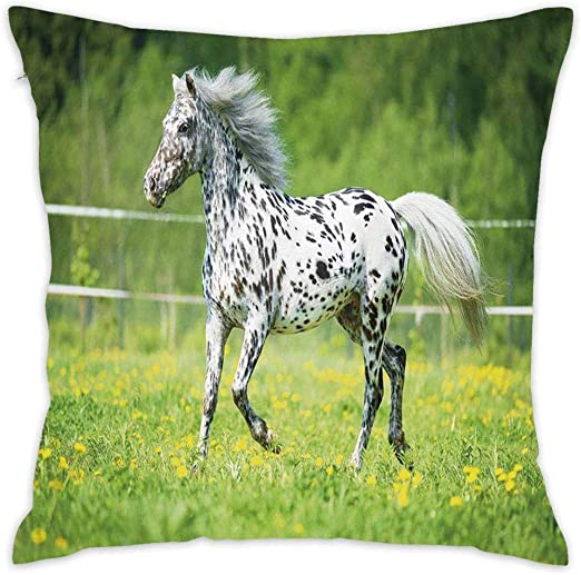 Amazon Com Appaloosa Horse Runs Trot On The Meadow Throw Pillow Covers Decorative Pillowcase For Sofa Bed Chair 18x18 Square Standard Size Pillow Case Home Kitchen