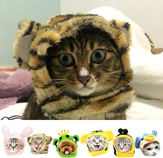 LCWYP Mascota Halloween Divertido,Lindo,Mascota,Gato,Disfraz,León ...