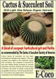 CACTUS & SUCCULENT COMPOST - CACTI SOIL WITH PERLITE FOR REPOTTING CACTI & SUCCULENTS PLANTS (2.5 LITRES)