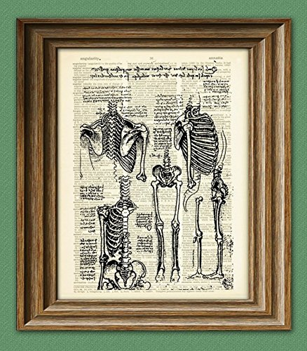 Leonardo Da Vinci Sketches - Science Art Print Study of the Human Skeleton from Leonardo DaVinci sketch on vintage dictionary page book art print Da vinci