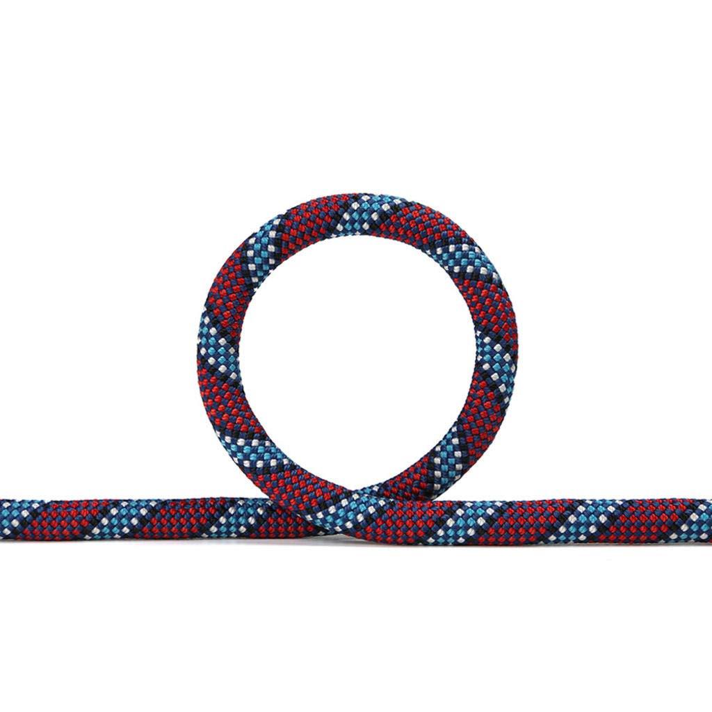 ROBAG アウトドアロッククライミングロープ 直径11mm アウトドアクライミングロープ 高高度落下保護 安全ロープ装備 B07GCZKX53 20meters|purple11mm purple11mm 20meters