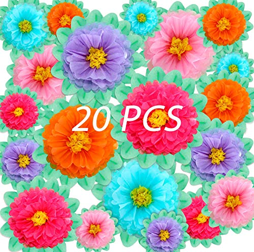 20PCS Set Large Sorted Colored Paper Flowers For Wall Decorations Chrysanth Tissue Crepe Big Pom Poms Balls 3D Bulk Pink Backdrops Party Floral Artificial DIY Rainbow Crafts Birthday Wedding Bridal (Two Sided Crepe Paper)