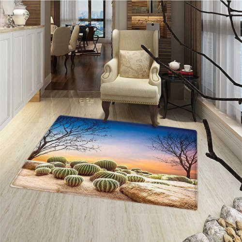 Cactus Bath Mats for floors Cactus Balls with Spikes on a Montain Desert Sand Hot Dry Mexican Landscape Photo Floor Mat Pattern 24''x48'' Multicolor by Anmaseven