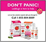 Ladibugs One and Done Lice Treatment Kit - 3-Step