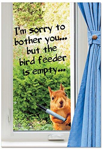 Empty Bird Feeder Birthday Funny Paper Card: Humor Birthday Card, with Envelope. C2561BDG