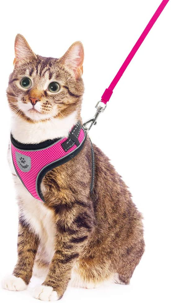 PUPTECK Cat Harness and Retractable Leash Set Escape Proof Reflective Mesh Walking Vest with Adjustable 16.5ft Leash for Cats Puppies Small Dog