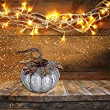 7-Inch Rustic Galvanized Metal Pumpkin Autumn Decoration