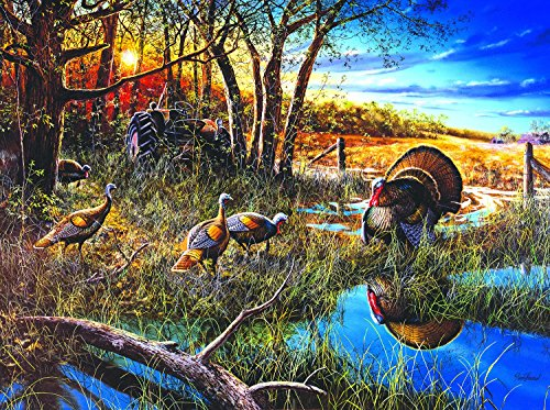 The Challenge 1000 pc Jigsaw Puzzle by SunsOut]()