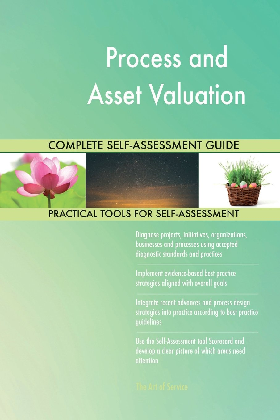Download Process and Asset Valuation Complete Self-Assessment Guide ebook