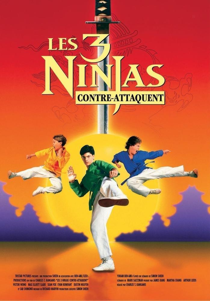 Amazon.com: Les 3 ninjas contre-attaquent: Movies & TV