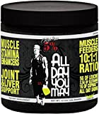 Rich Piana 5% Nutrition All Day You May BCAA & Joint Recovery Drink (Lemon-Lime) 17.2oz (465 Grams) 30 Servings