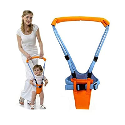 Leoneva Toddler Learning Walker Suitable for Baby Children 0-2 Years Old Walkers : Baby