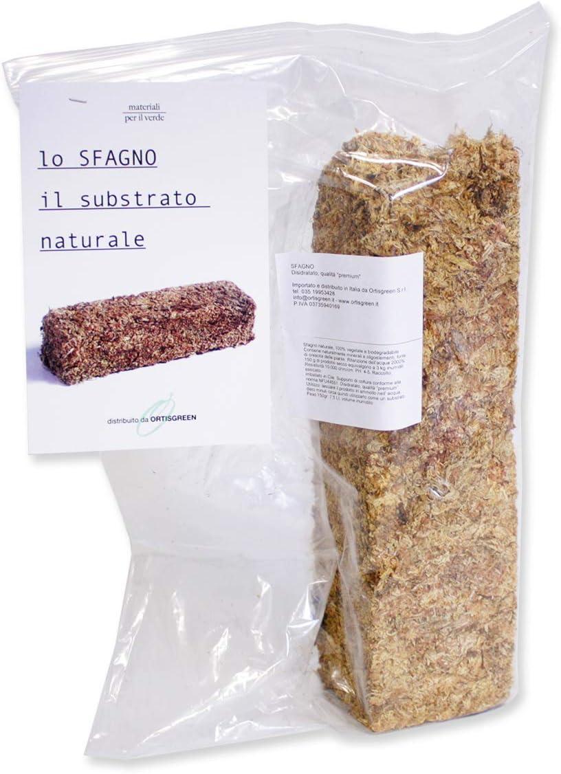 Esfagno Chileno Premium en Fibra 150 gr., Sustrato Natural de Esfagno Musgo para Orquídeas y Bonsai, Sphagnum Moss