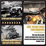 Grab Bar Handle for Select Jeep
