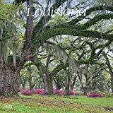 Louisiana, Wild & Scenic 2019 12 x 12 Inch Monthly Square Wall Calendar, USA United States of America Southeast State Nature