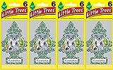 Automotive : Little Trees Eucalyptus Air Freshener, (Pack of 24)