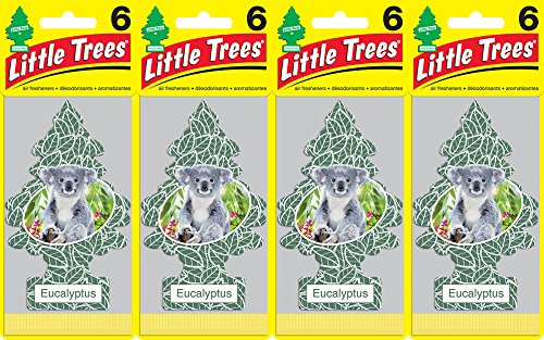 Little Trees Eucalyptus Air Freshener, (Pack of 24)
