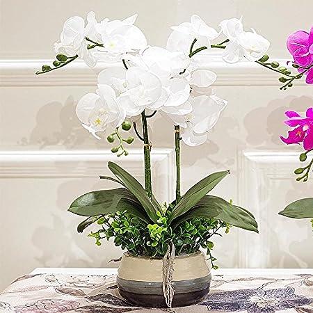 Orchidée Artificielle Haut De Gamme