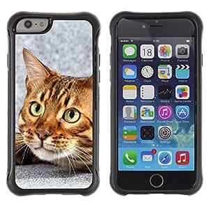 Suave TPU Caso Carcasa de Caucho Funda para Apple Iphone 6 / Bengal Cat House Kitten Feline Pet / STRONG