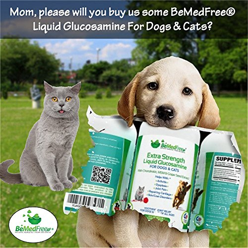 BeMedFree.com Extra Strength Liquid Glucosamine - Hip And Joint Pain Relief Supplement For Dogs And Cats - With Chondroitin, MSM, And Grape Seed Extract, 32 fl. oz. by BeMedFree.com (Image #1)