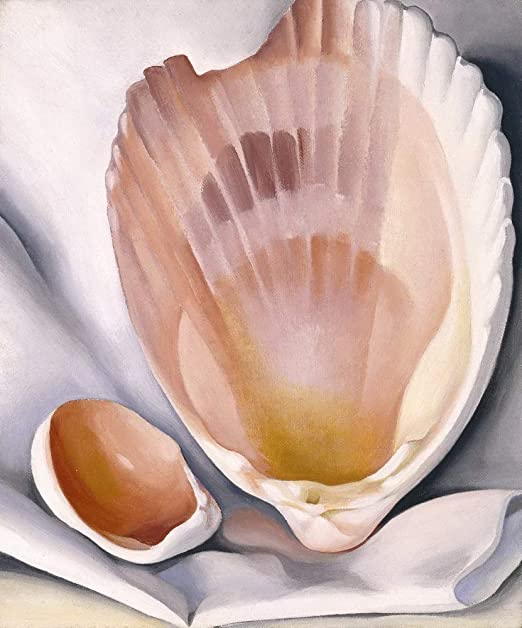 Georgia O/'Keeffe Two Pink Shells Giclee Art Paper Print Poster Reproduction