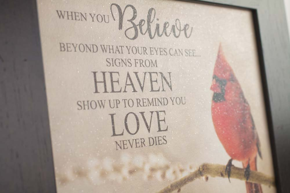 Details about New When You Believe Beyond What Your Eyes Can See Signs From  Heaven Pussywillow