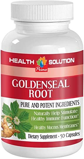 Goldenseal Powder Organic – GOLDENSEAL Root Extract – Candida Overgrowth Control 1 Bottle