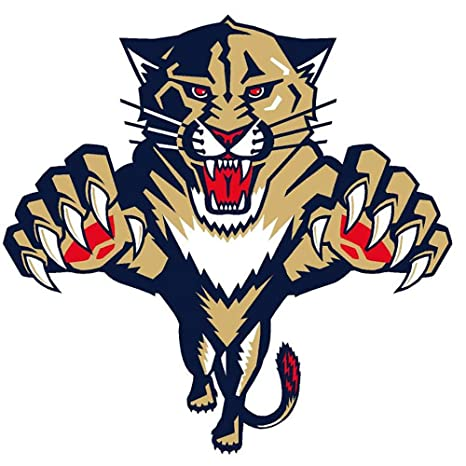 ca2da0930d5 Image Unavailable. Image not available for. Color  NHL Florida Panthers ...
