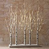 30 Inch Lighted Birch Grove