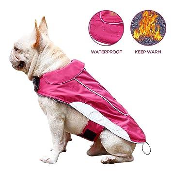 Amazoncom Cutepet Reflective Dog Vest With Harness Hole Dog
