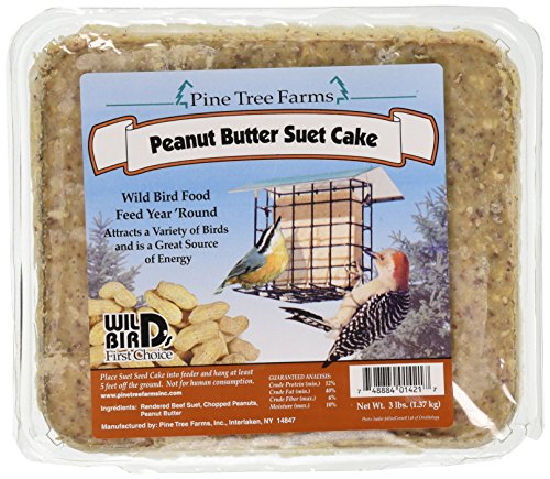 Pine Tree 1421 Peanut Butter Wild Bird Suet Cake, 3-Pound (Peanut Butter Bird Food)