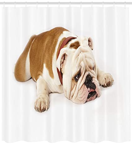 Ambesonne English Bulldog Shower Curtain Sad And Tired Laying Down European Pure Breed Animal