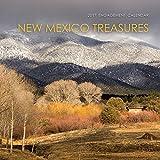 New Mexico Treasures 2017: Engagement Calendar